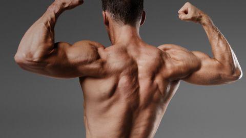 Alpha Testo Boost - pour la masse musculaire - action - France - pas cher