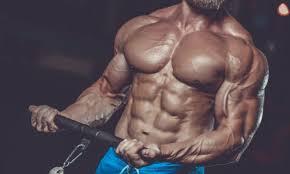 Amarok - pour la masse musculaire - prix - France - dangereux