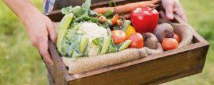 Keto Pure Diet - pour mincir - sérum - forum - en pharmacie