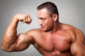 AndroDNA Testo Boost - pour la masse musculaire - effets - comprimés - prix